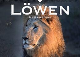 Kalender (Kal) Löwen. Die Könige Afrikas (Wandkalender 2022 DIN A3 quer) von Robert Styppaa