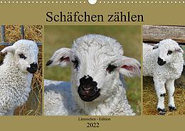 Kalender (Kal) Schäfchen zählen - Lämmchen-Edition (Wandkalender 2022 DIN A3 quer) von Sabine Löwer