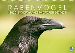 Kalender Rabenvögel: Schwarz, schlau, schön (Wandkalender 2022 DIN A2 quer) von CALVENDO