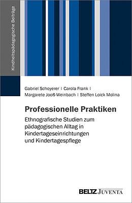 Kartonierter Einband Professionelle Praktiken von Gabriel Schoyerer, Carola Frank, Margarete Jooß-Weinbach