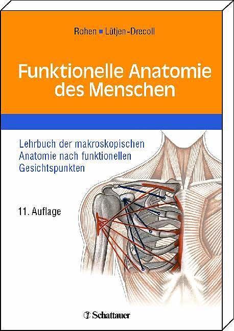 Funktionelle Anatomie des Menschen - Johannes W. Rohen, Elke Lütjen ...