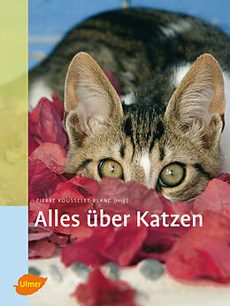 Alles über Katzen Cover