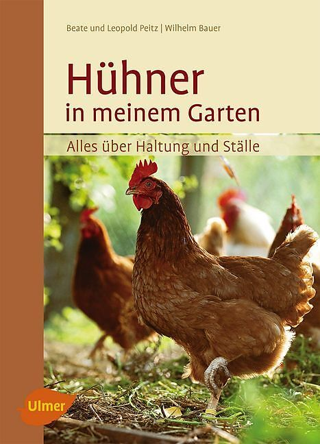 Hühner in meinem Garten