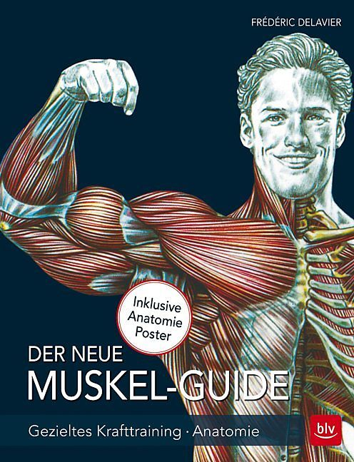 Der neue Muskel Guide - Frédéric Delavier - Buch kaufen | exlibris.ch
