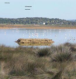Cover: https://exlibris.azureedge.net/covers/9783/8476/9278/2/9783847692782xl.jpg