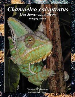 Kartonierter Einband Chamaeleo Calyptratus von Wolfgang Schmidt