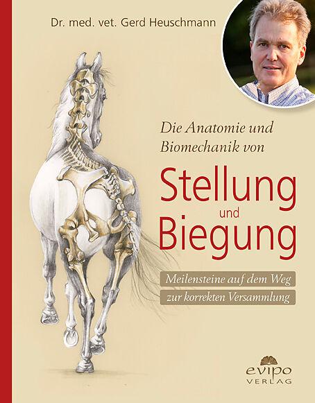 Die Anatomie und Biomechanik von Stellung und Biegung - Gerd ...