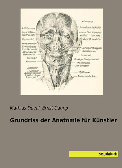 Grundriss der Anatomie für Künstler - Mathias Duval - Buch kaufen ...