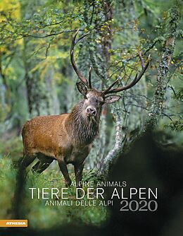 Cover: https://exlibris.azureedge.net/covers/9788/8683/9406/6/9788868394066xl.jpg