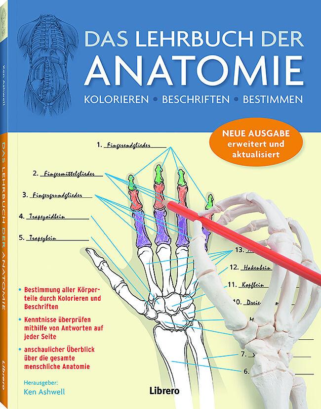 Das Lehrbuch der Anatomie - Kurt H. Albertine - Buch kaufen ...