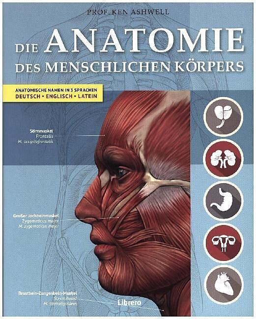 Der Menschliche Körper - Ken Ashwell - Buch kaufen | exlibris.ch
