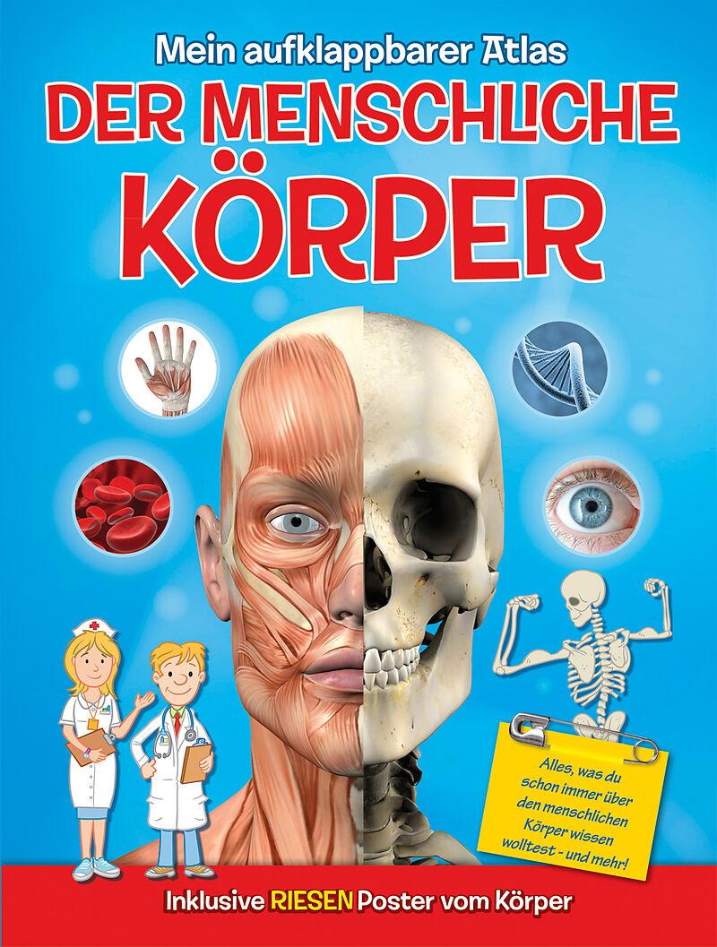 Mein aufklappbarer Atlas - Der menschliche Körper - - Buch kaufen ...