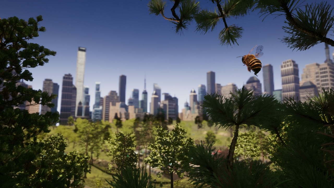 Bee Simulator [NSW] (D/F)