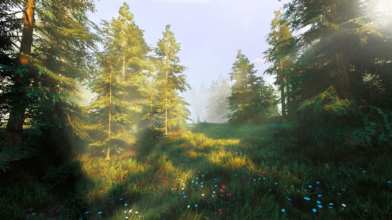 Hunting Simulator 2 [PC] (D/F)