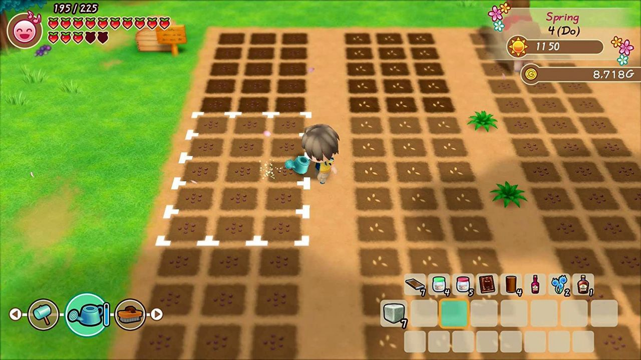 Story of Seasons: Friends of Mineral Town [NSW] (D)