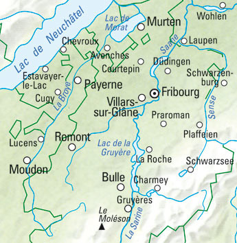 Fribourg Nr. 31 Wanderkarte 1:60 000